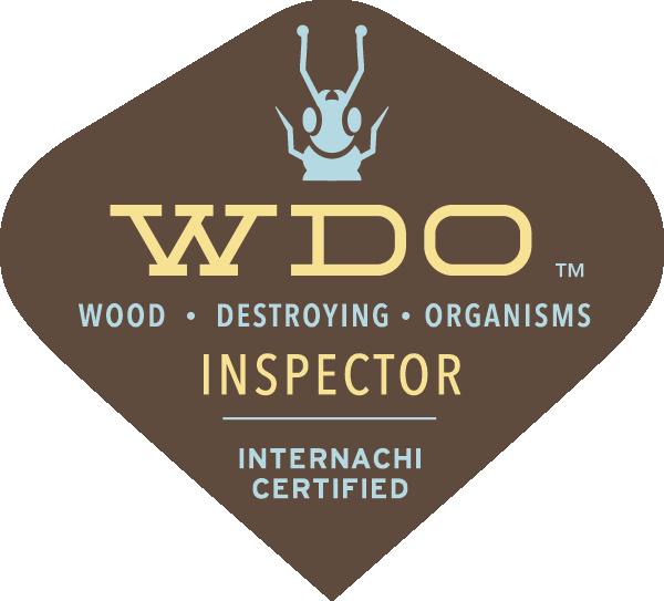 WDI Termite Inspection Cincinnati